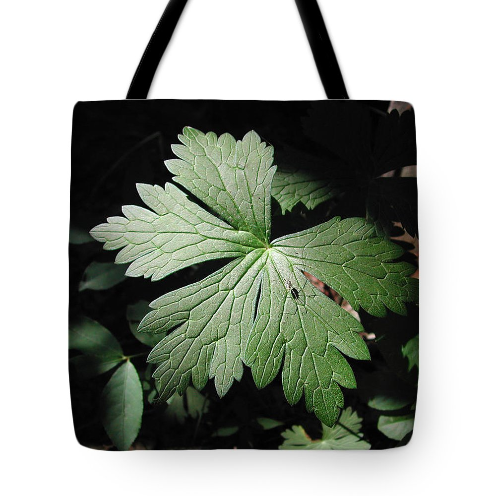 Photograph Tote Bag featuring the photograph Shadowcrawler by Steven Scanlon