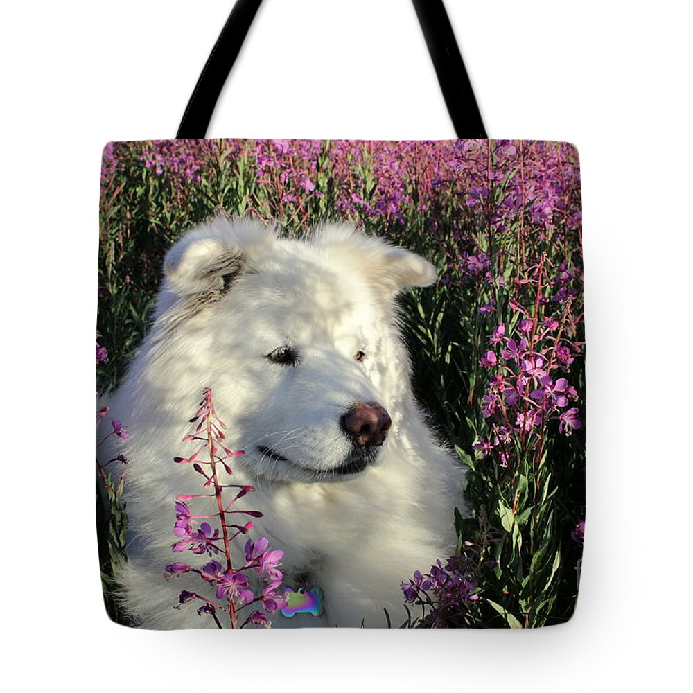 Samoyed Tote Bag featuring the photograph Shadows by Fiona Kennard