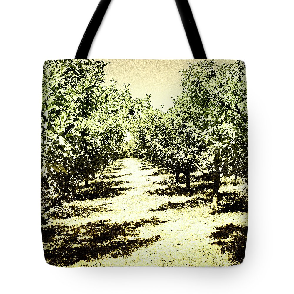 Trees Tote Bag featuring the photograph Shady Grove Palm Springs by William Dey
