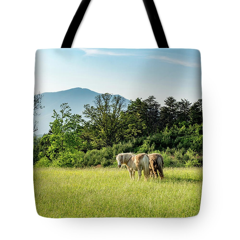 Tote Bag featuring the photograph Shaggy by Steve Hammer