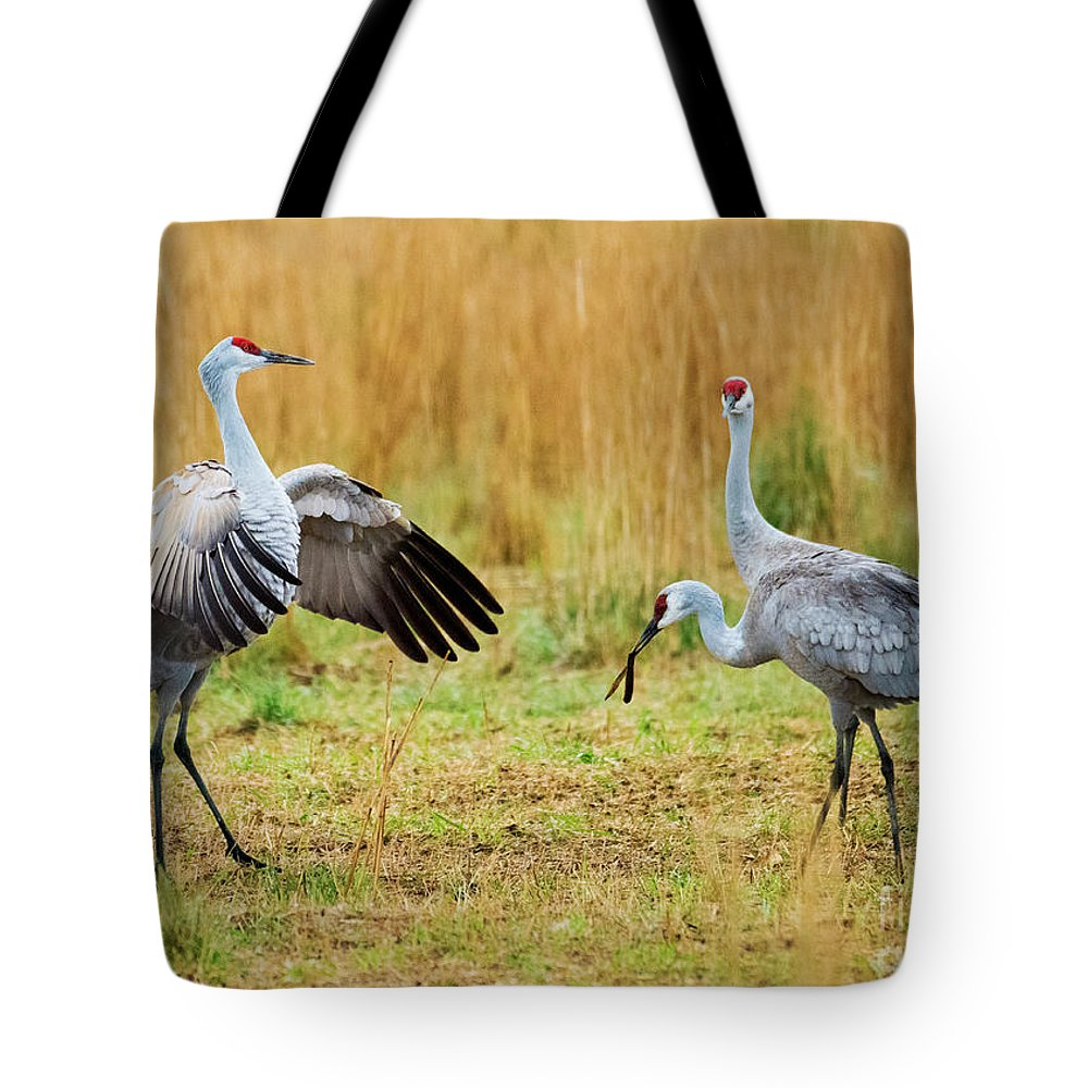 Sandhill Cranes Tote Bag featuring the photograph Shall We Dance by Mike Dawson