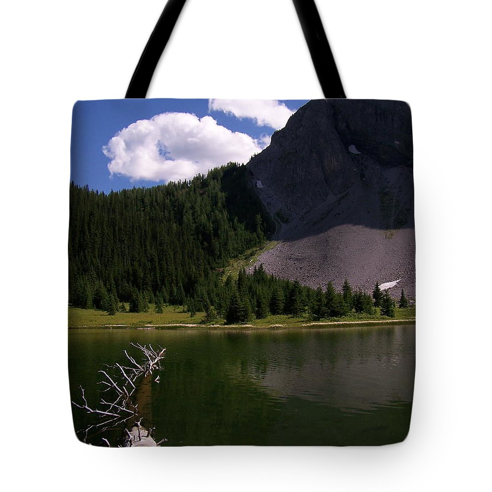 Fallen Tree Tote Bag featuring the photograph Shallow Mountain Lake by Greg Hammond