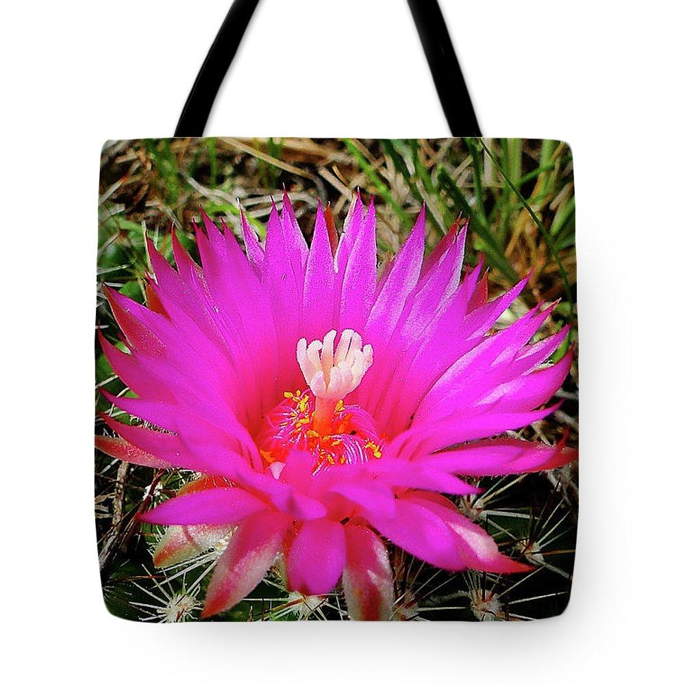 Wildflower Tote Bag featuring the photograph Pincushion Cactus - Coryphantha Vivipara by Blair Wainman