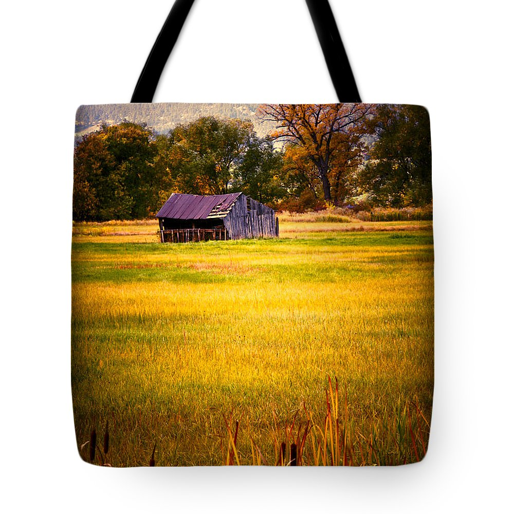Shed Tote Bag featuring the photograph Shed In Sunlight by Marilyn Hunt