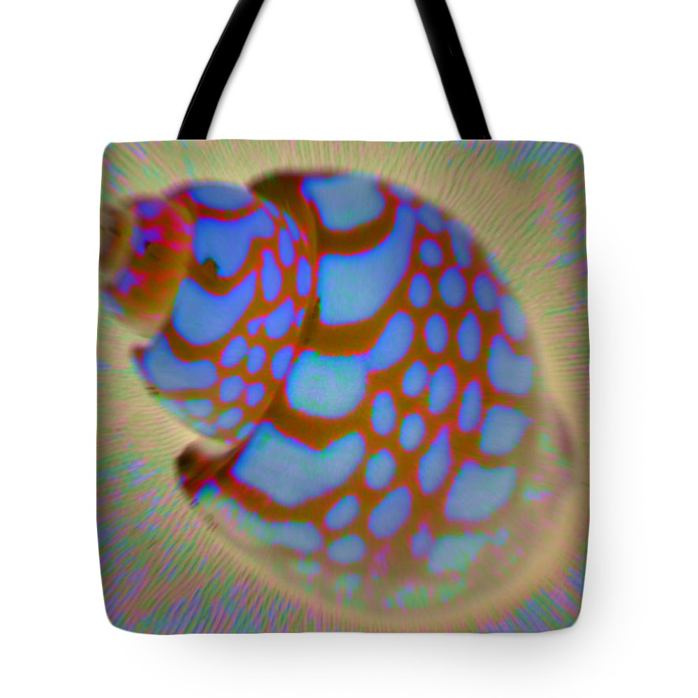 Seashells Tote Bag featuring the photograph Shellish by Natalie Bollinger