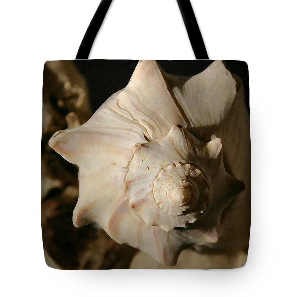 Shells Tote Bag featuring the photograph Shell And Driftwood by Mary Haber