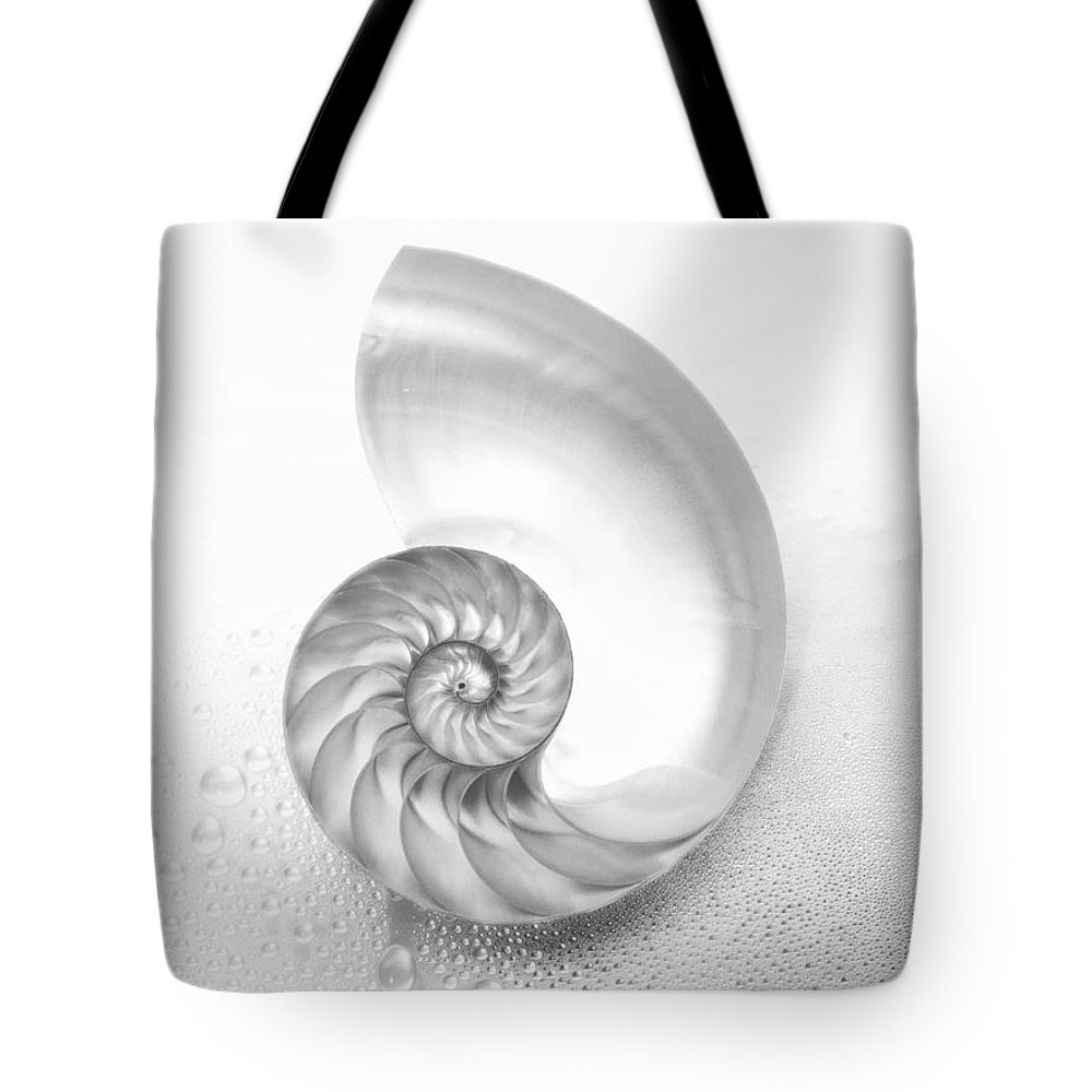 62-csm0007 Tote Bag featuring the photograph Shell Inside - Bw by Kate Turning & Tom Gibson - Printscapes