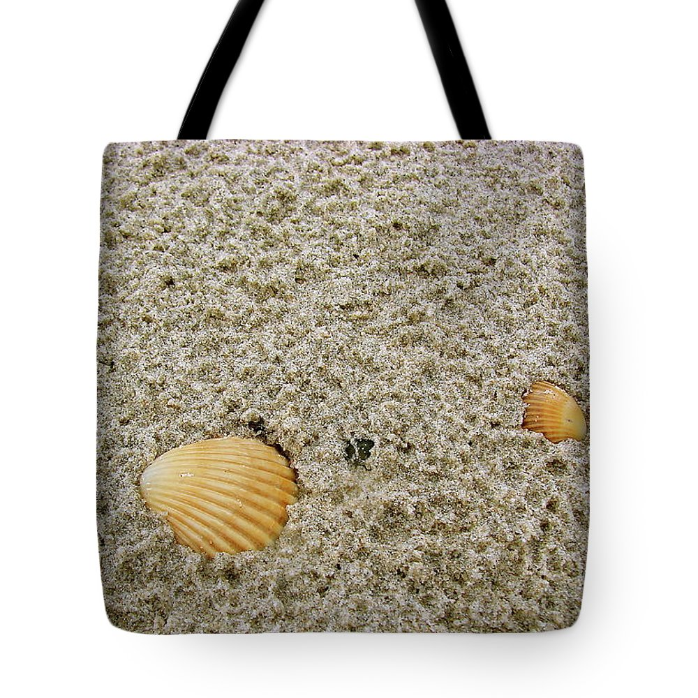 Port Tote Bag featuring the photograph Shells In The Sand by Brett Winn