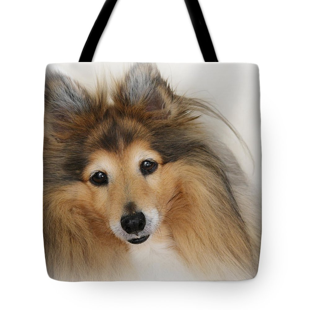 Sheltie Dog Tote Bag featuring the photograph Sheltie Dog - A Sweet-natured Smart Pet by Christine Till