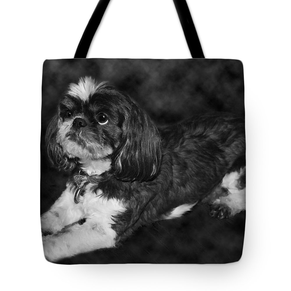 3scape Tote Bag featuring the painting Shih Tzu by Adam Romanowicz