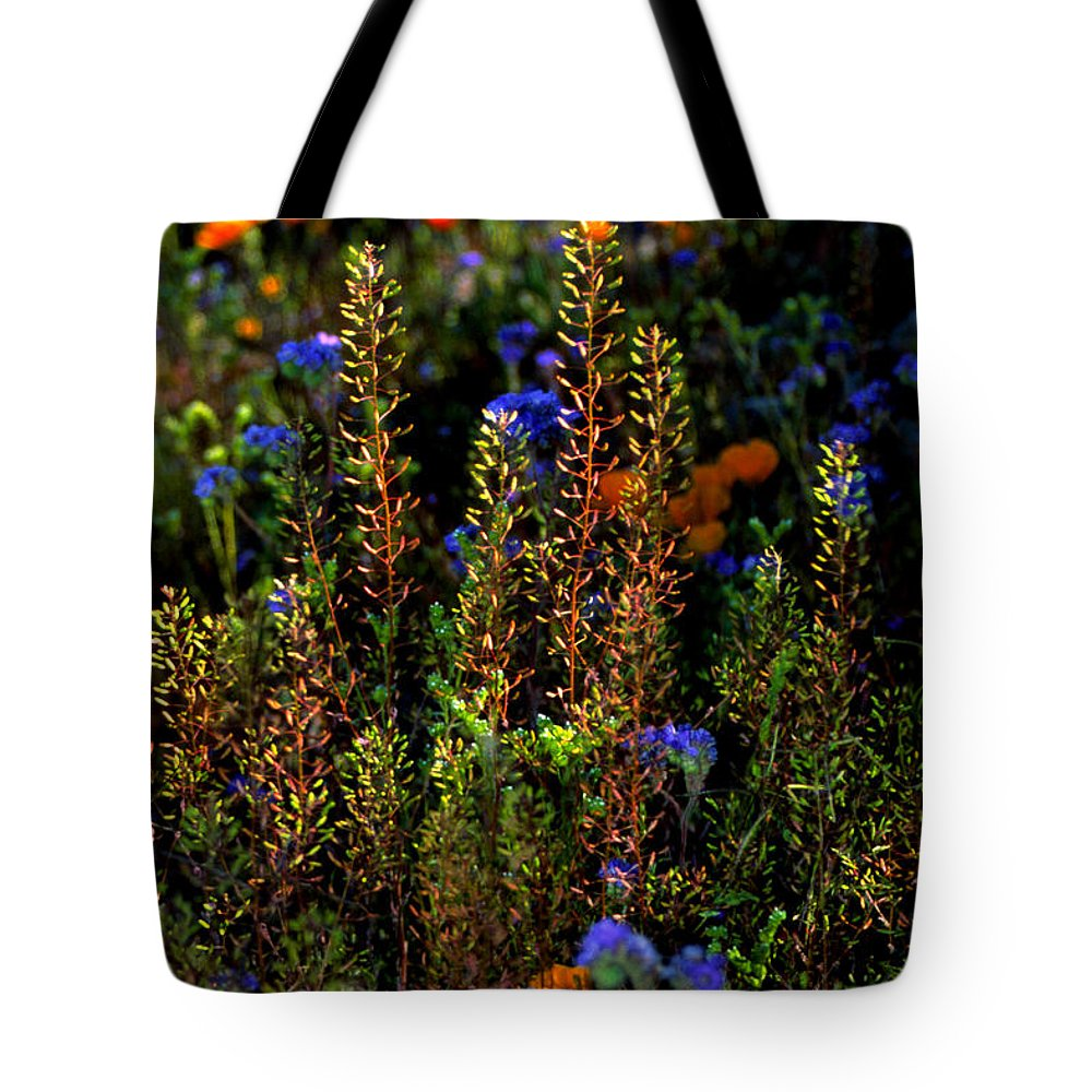 Flowers Tote Bag featuring the photograph Shimmers by Randy Oberg