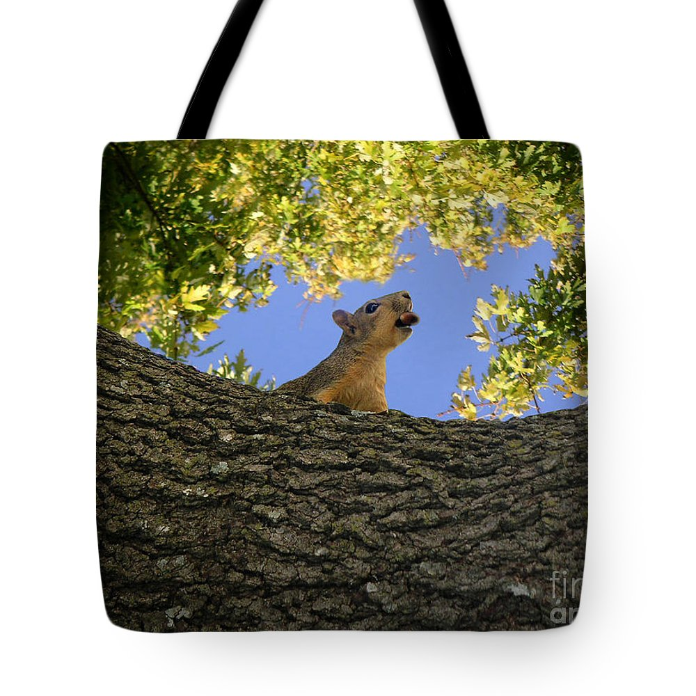 Nature Tote Bag featuring the photograph Show But Not Tell by Lucyna A M Green