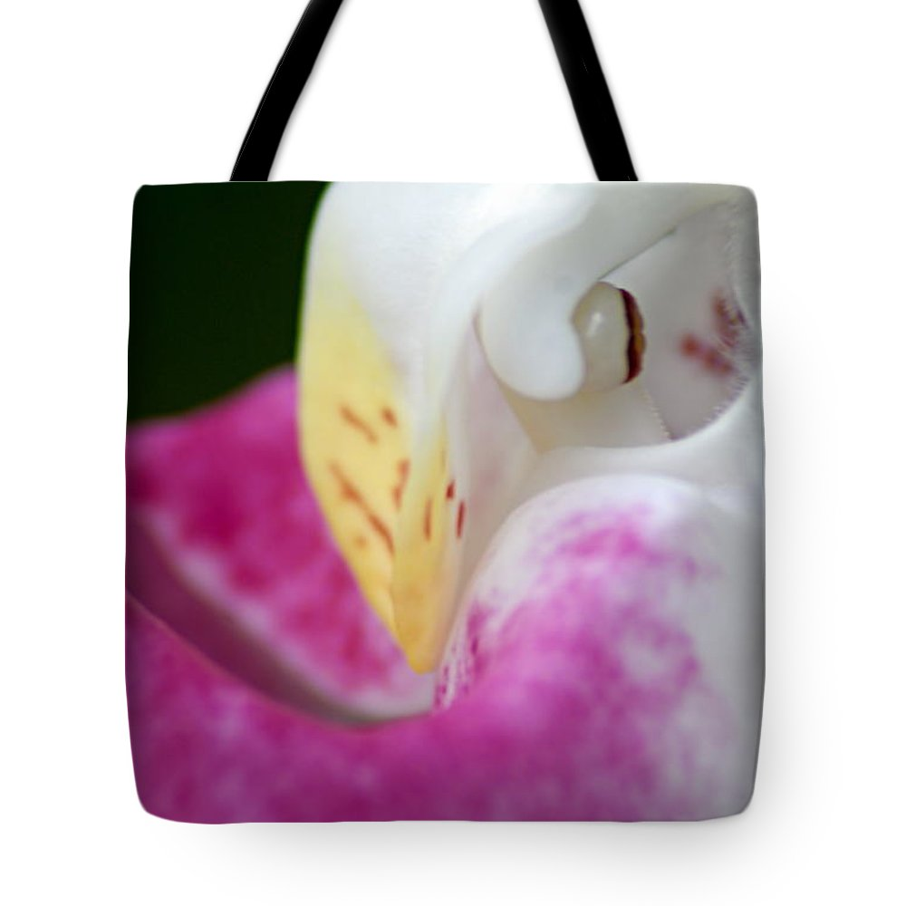 Showy Ladyslipper Tote Bag featuring the photograph Showy Ladyslipper Up Close And Personal by Larry Ricker