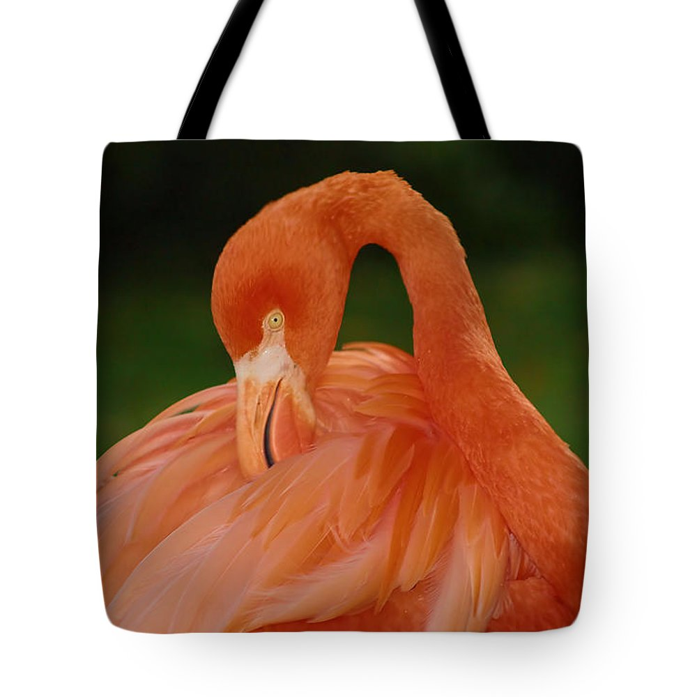 Flamingo Tote Bag featuring the photograph shy by Gaby Swanson