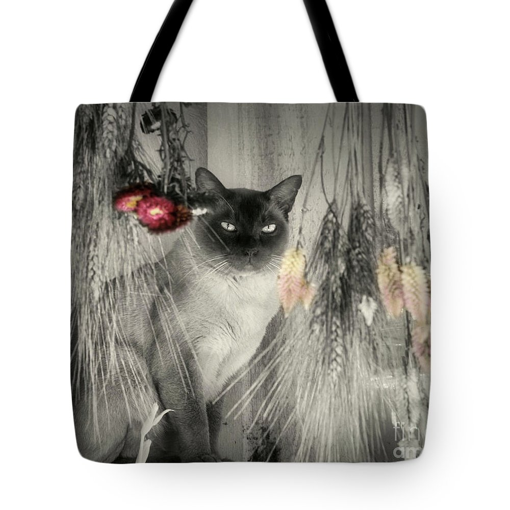 Siamese Cat Tote Bag featuring the photograph Siamese Cat In Black And White by Smilin Eyes Treasures