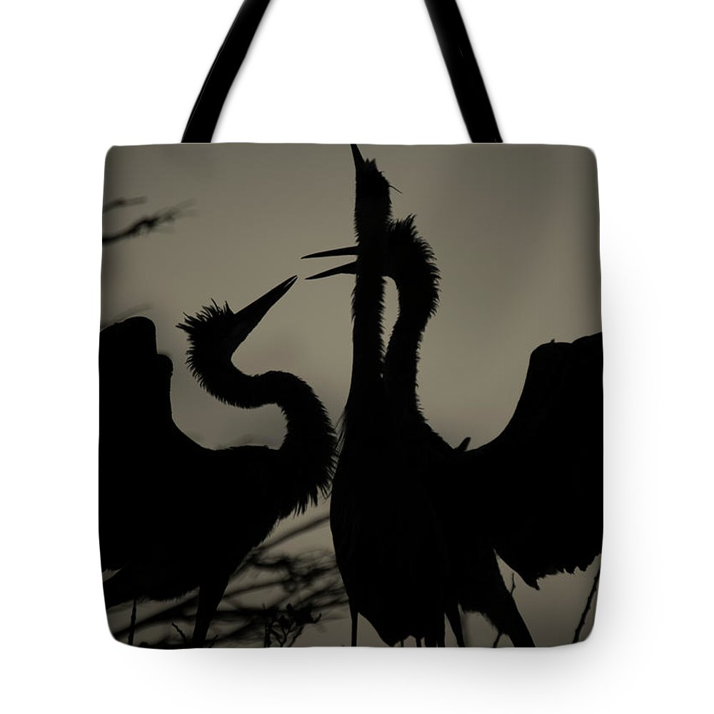 Sibling Rivalry Tote Bag featuring the photograph Sibling Rivalry by Don Columbus