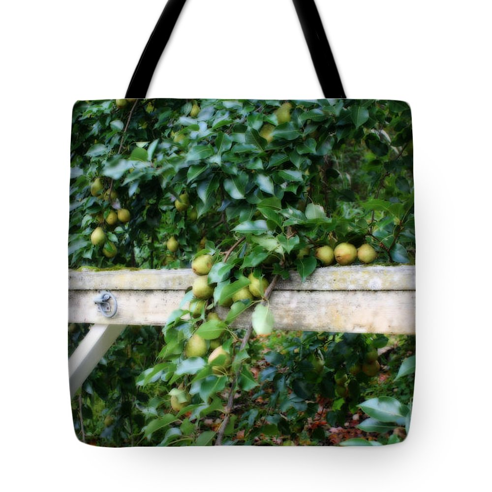 Autumn Tote Bag featuring the photograph Signs Of Autumn by Smilin Eyes Treasures