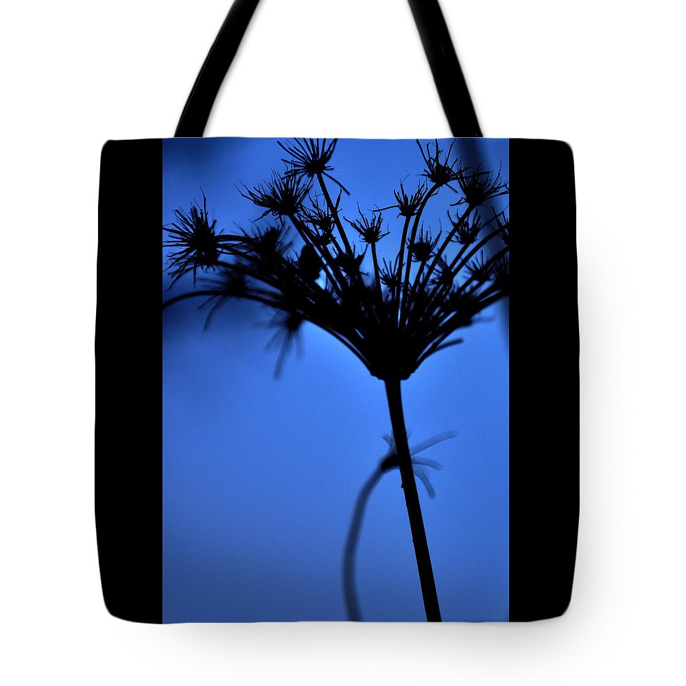 Silhouette Tote Bag featuring the photograph Silhouette Blue by Damijana Cermelj