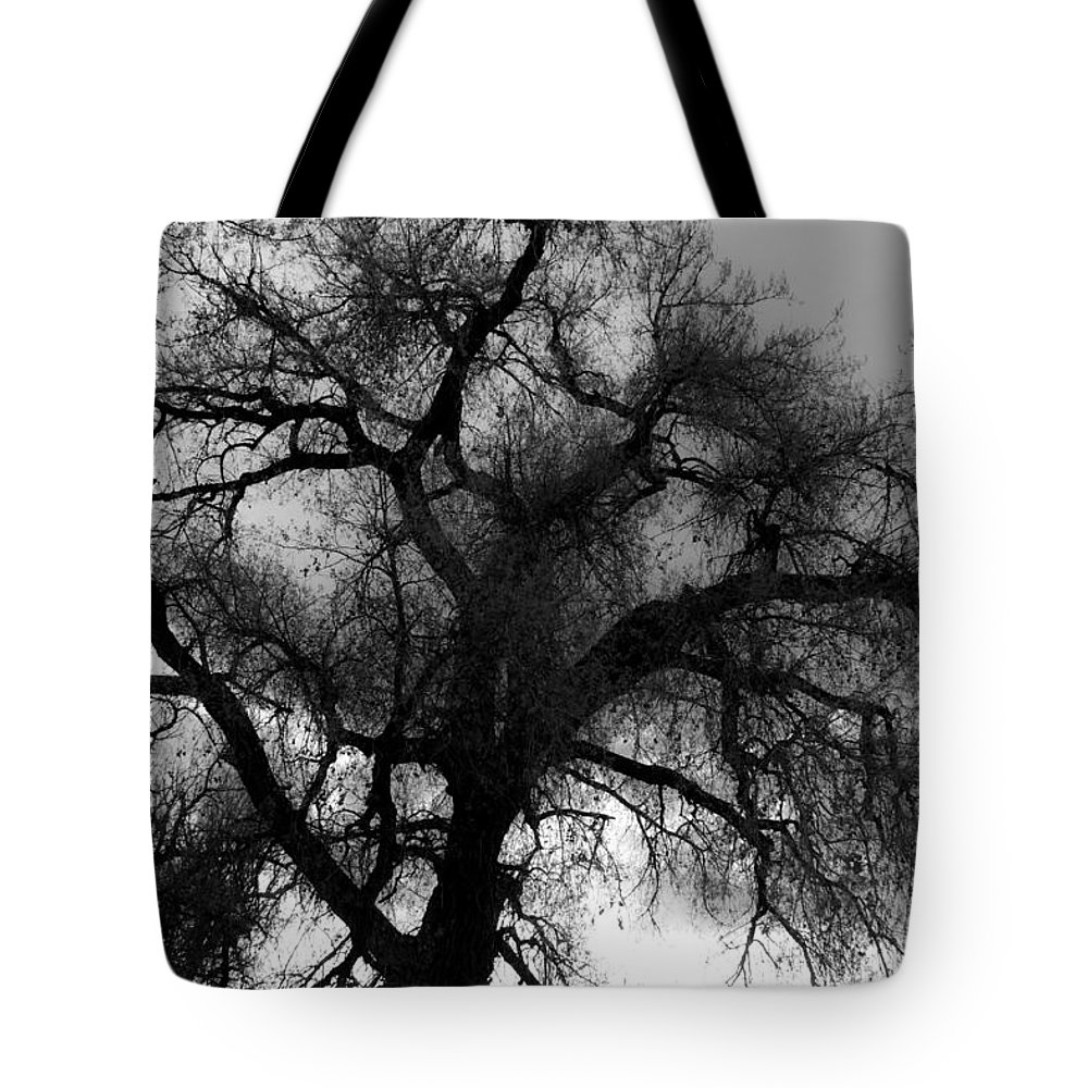Silhouette Tote Bag featuring the photograph Silhouette by James BO Insogna