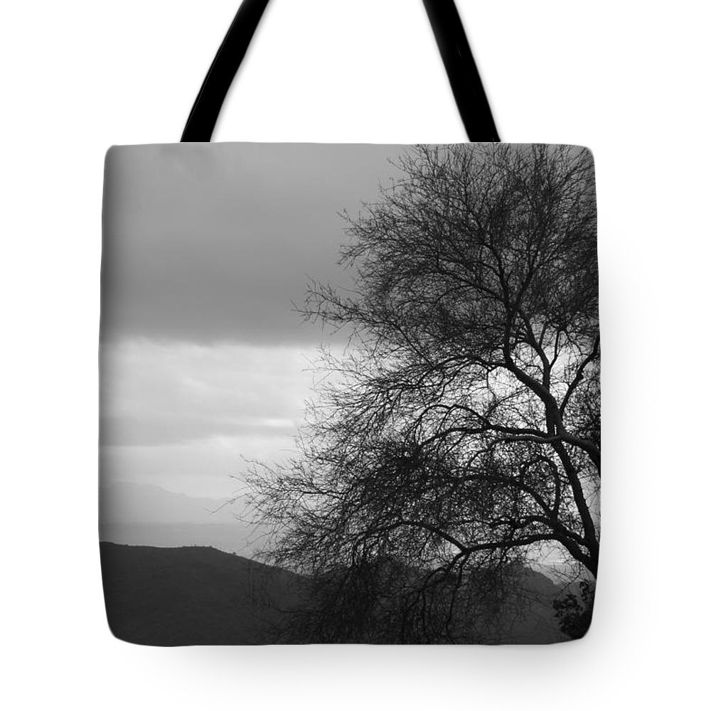 Tree Tote Bag featuring the photograph Silhouette by Lauri Novak