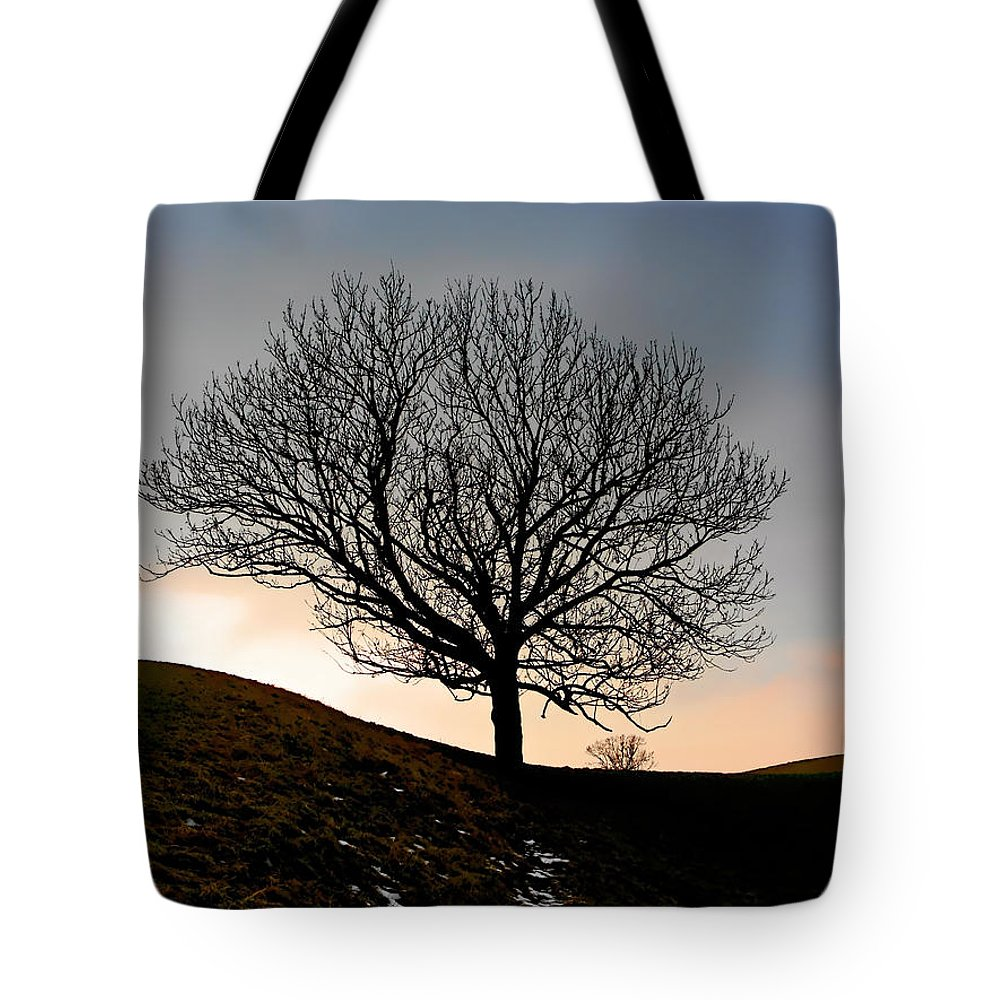 Tree Tote Bag featuring the photograph Silhouette of a tree on a winter day by Christine Till