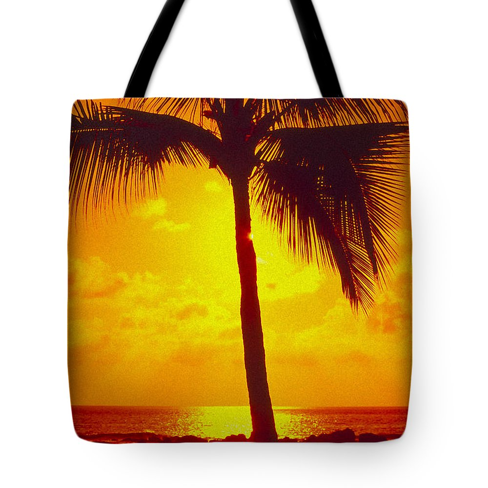 Bright Tote Bag featuring the photograph Silhouetted Palm by Ron Dahlquist - Printscapes