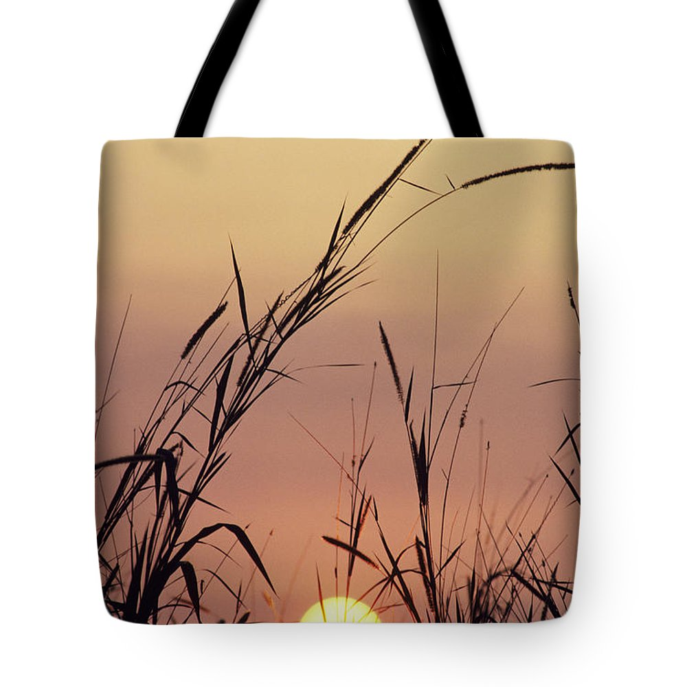 Beautiful Tote Bag featuring the photograph Silhouettes by Greg Vaughn - Printscapes