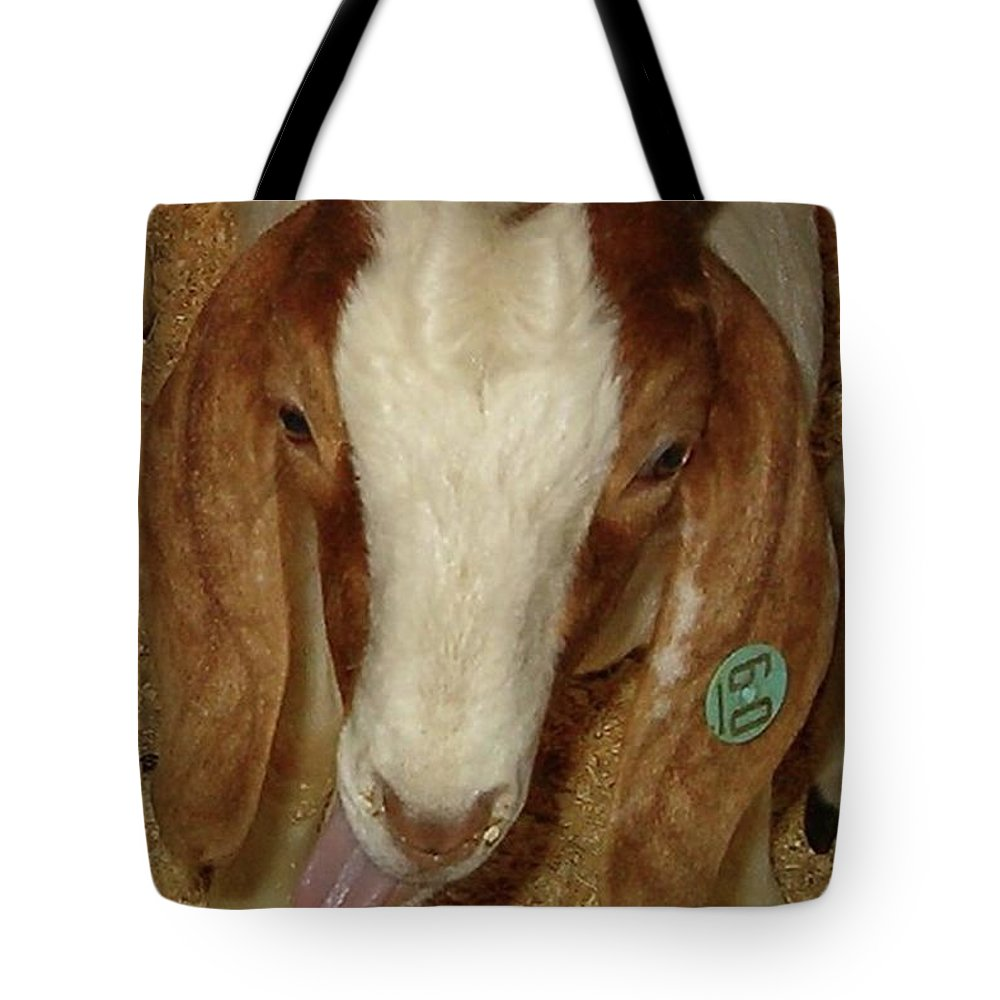 Goat Tote Bag featuring the photograph Silly 60 by Sara Raber