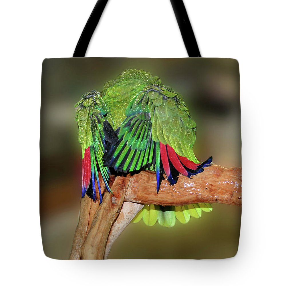 Animal Tote Bag featuring the photograph Silly Amazon Parrot by Smilin Eyes Treasures