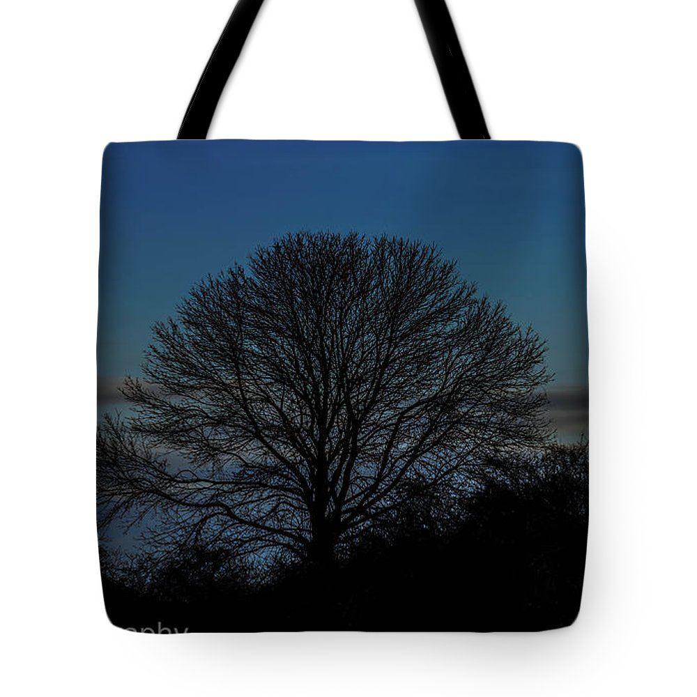 Oak Tree Silhouette Landscape Tote Bag featuring the photograph Silouhette by Phillip Beyser