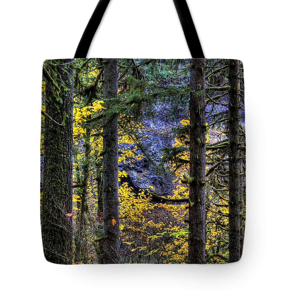 Landcsape Tote Bag featuring the photograph Silver Falls State Park Oregon 2 by Lee Santa