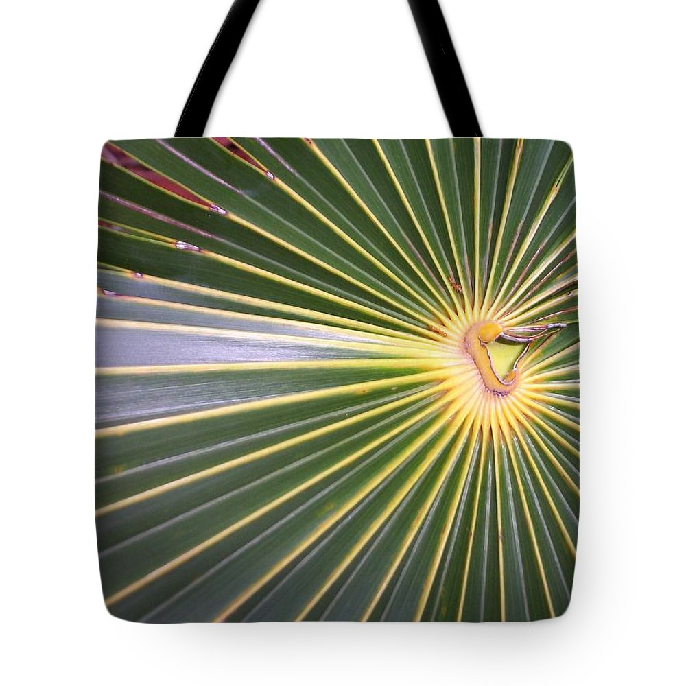 Nature Tote Bag featuring the photograph Silver Palm by Kimberly Mohlenhoff