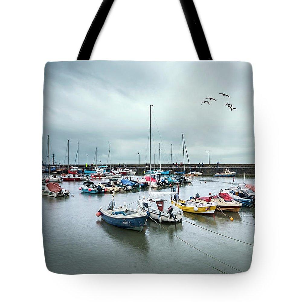 Kremsdorf Tote Bag featuring the photograph Silver Rain by Evelina Kremsdorf