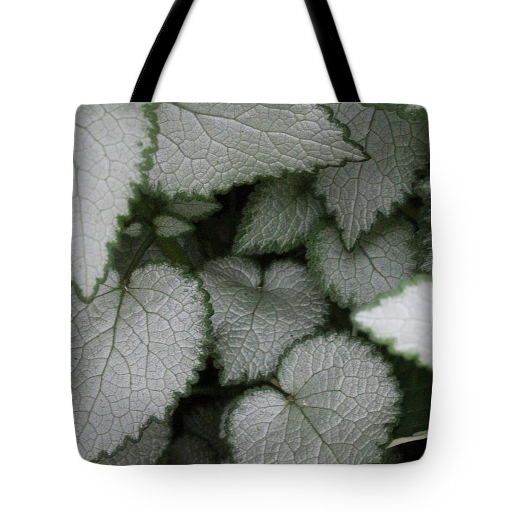 Silver Sensations Tote Bag featuring the photograph Silver Sensations by Ed Smith