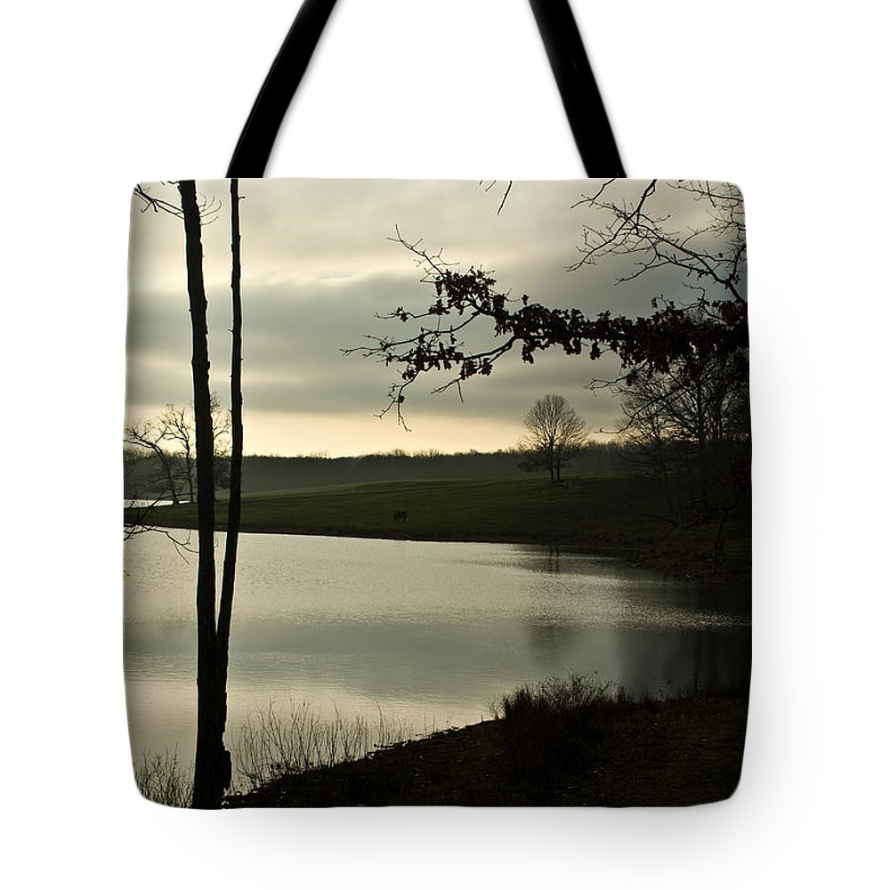 Lake Tote Bag featuring the photograph Silver Winter Lake by Douglas Barnett