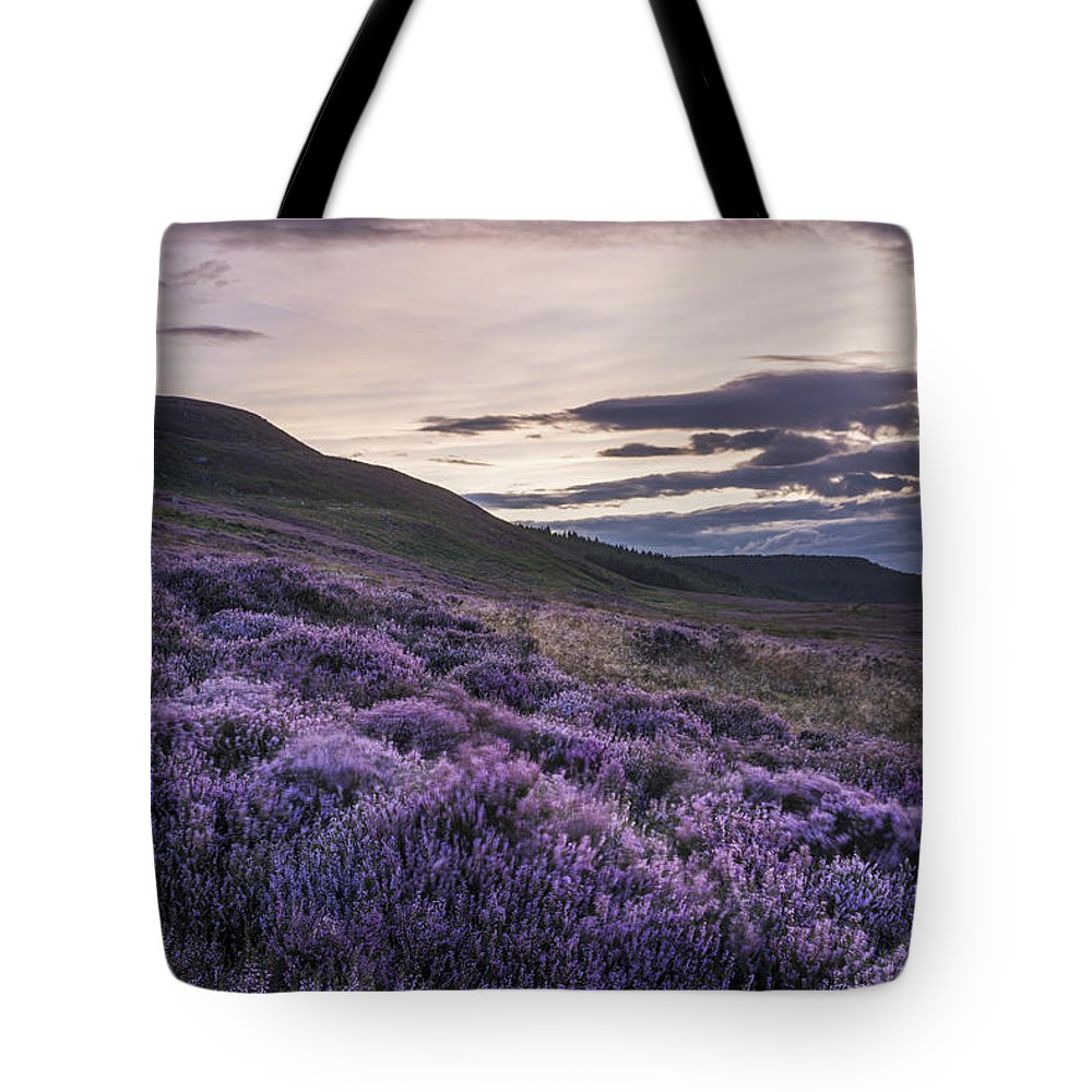 Britain Tote Bag featuring the photograph Simonside Heather by David Taylor