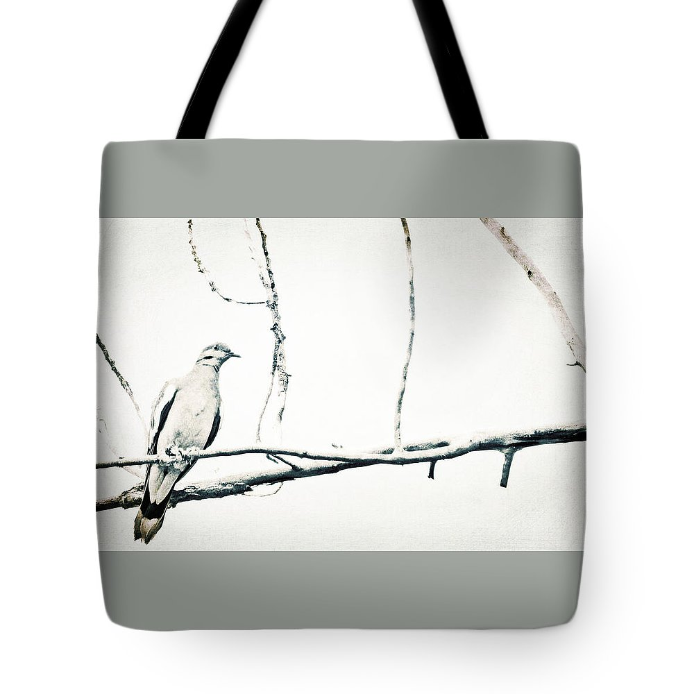Backyard Birds Tote Bag featuring the photograph Simple Dove by Brent Hall
