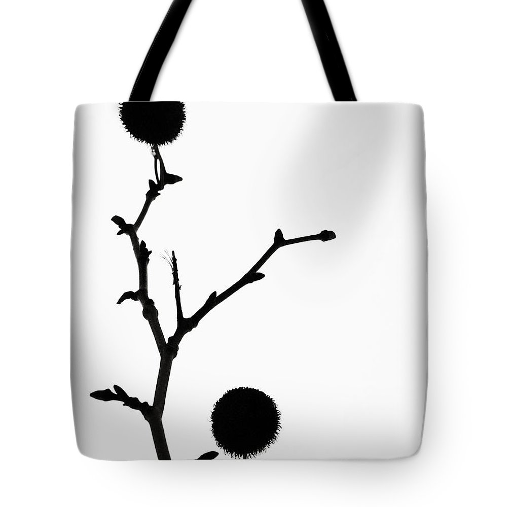 Simple Tote Bag featuring the photograph Simple Silhouette 3 by Tara Turner