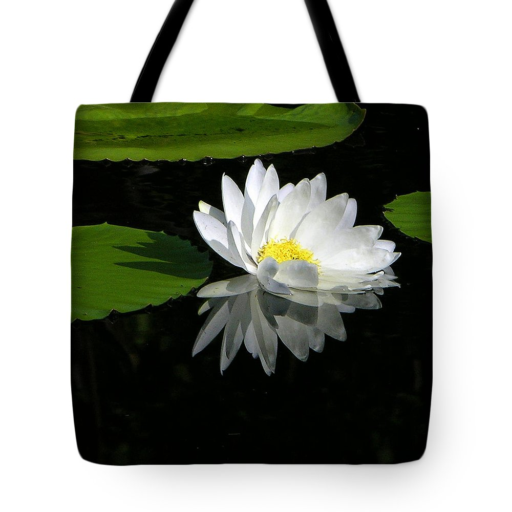 Water Lily Tote Bag featuring the photograph Simply White on Black by John Lautermilch