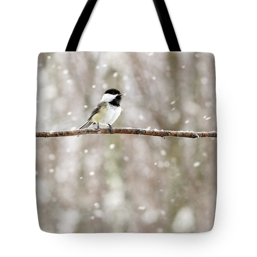 Chickadee Tote Bag featuring the photograph Sing Chickadee Sing by Angie Rea