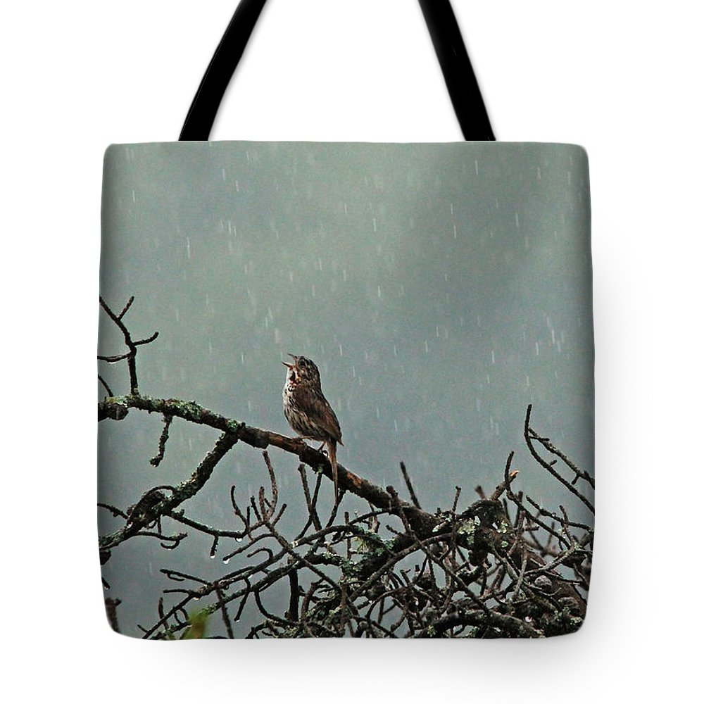 Sparrows Tote Bag featuring the photograph Singing In The Rain by Debbie Oppermann