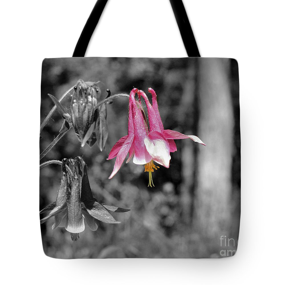 Flower Tote Bag featuring the photograph Single Pink Columbine by Smilin Eyes Treasures