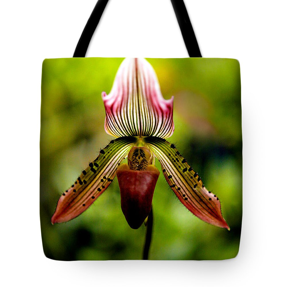Orchid Tote Bag featuring the photograph Singular Beauty by Marilyn Hunt