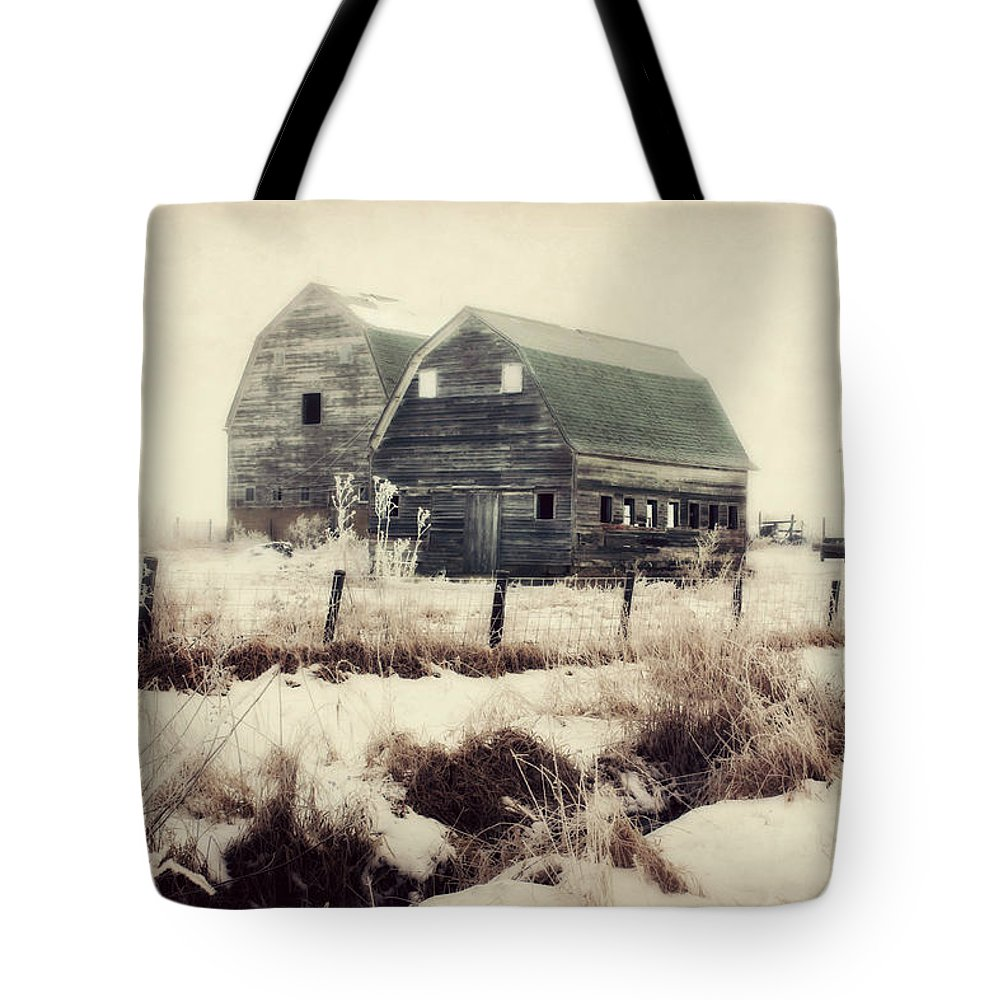 Barn Tote Bag featuring the photograph Sister Barns by Julie Hamilton