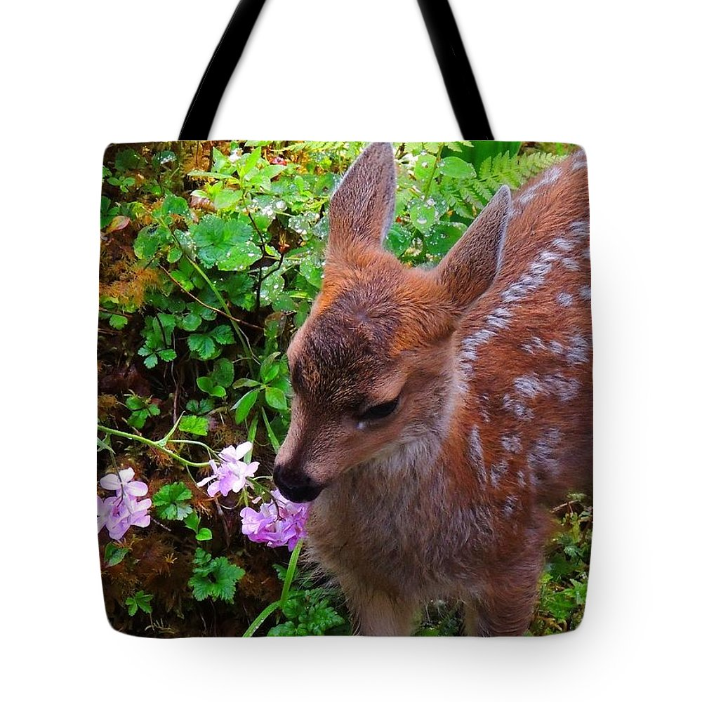Alaska Images Tote Bag featuring the photograph Sitka Black-tailed Fawn by Dan McIntyre