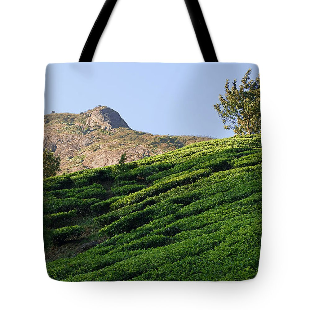 Agriculture Tote Bag featuring the photograph Skn 6662. Dominating. Color by Sunil Kapadia