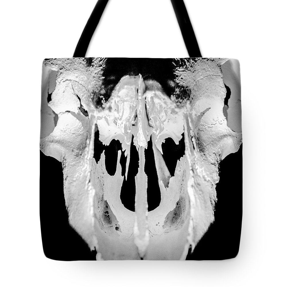 Skull Tote Bag featuring the photograph Skull Detail by Alex Snay