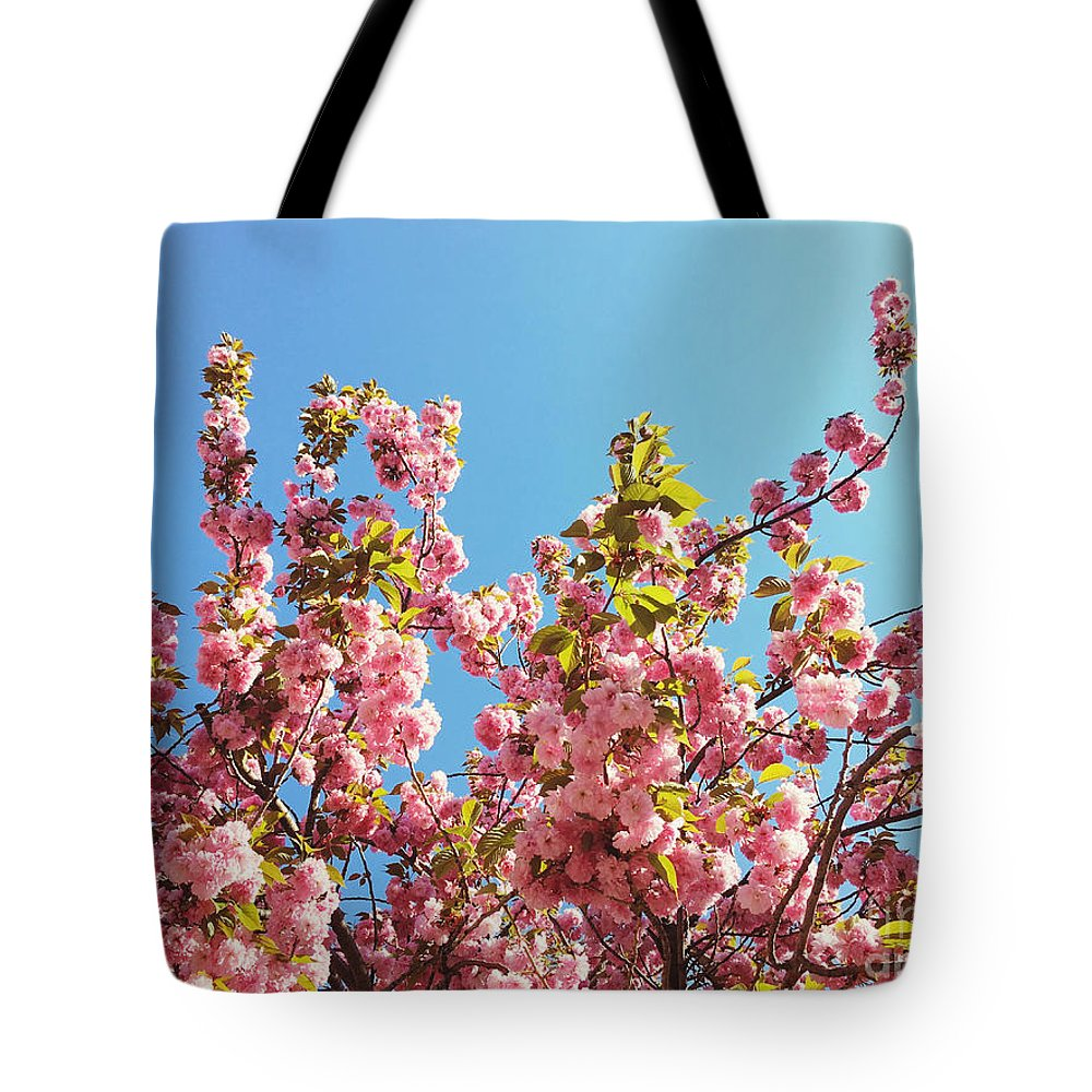 Cherry Blossoms Tote Bag featuring the photograph Sky Blooms by Onedayoneimage Photography
