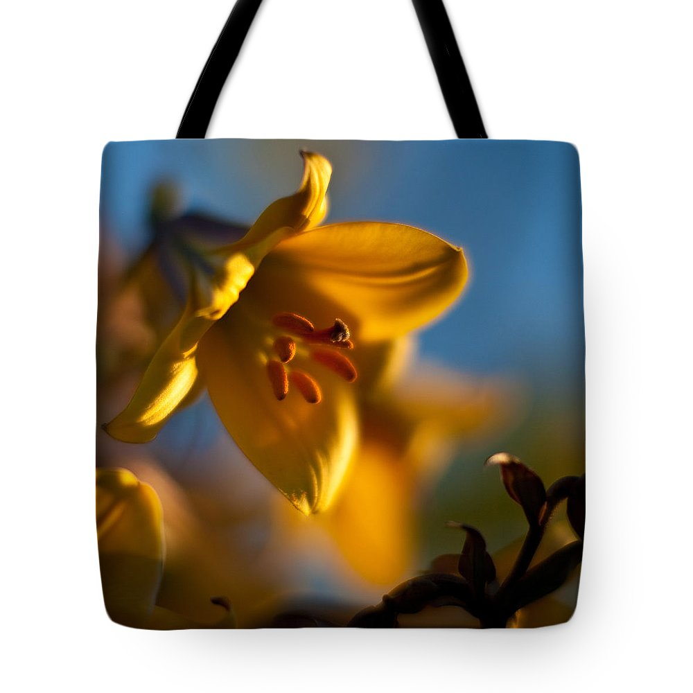 Lily Tote Bag featuring the photograph Skylit Lily by Mike Reid
