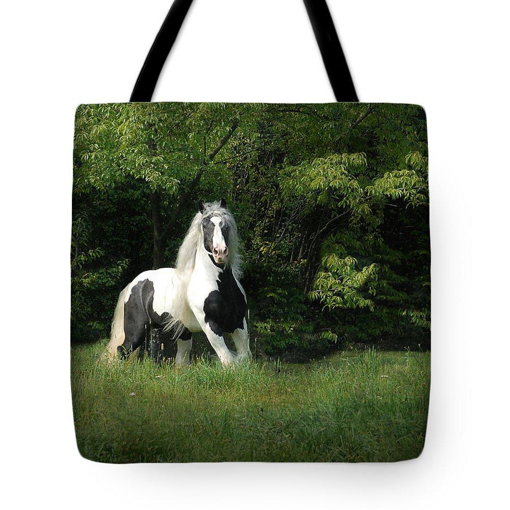 Horse Artwork Tote Bag featuring the photograph Slainte by Fran J Scott
